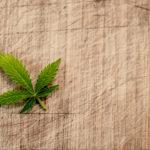 ◆日本もマリファナを容認・解禁する動きが必ず生まれていく