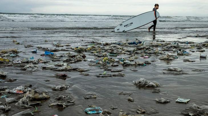 海に捨てられたゴミはどこにいくのか。それはあなたの口の中である